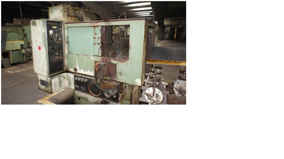 External Grinding Machine  SWA AGL 125/4